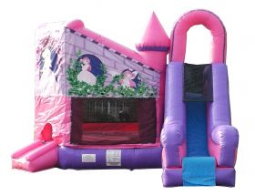 Buy Pink Princess Bounce House with Slide Combo and Blower
