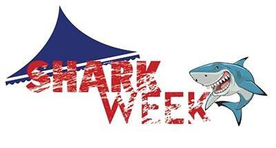 Tent & Shark Sale